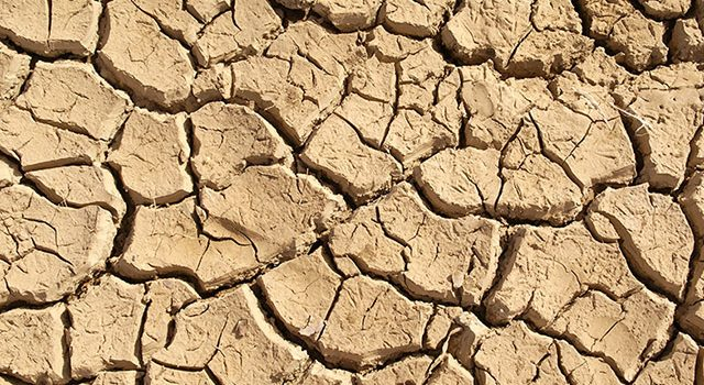 The UNU point of view on the Globedrought project