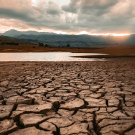 UNU-EHS experts appointed Lead Authors for UNDRR GAR Special Report on Drought