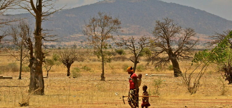 GlobeDrought researcher wins DKKV Young Talents Award 2020 for thesis on drought risk in Zimbabwe